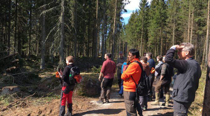 Skogskurs för journalister