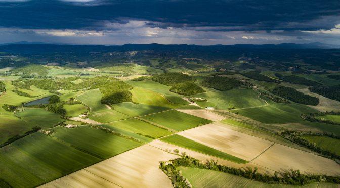 Nytt stipendie för bättre jordbruksjournalistik