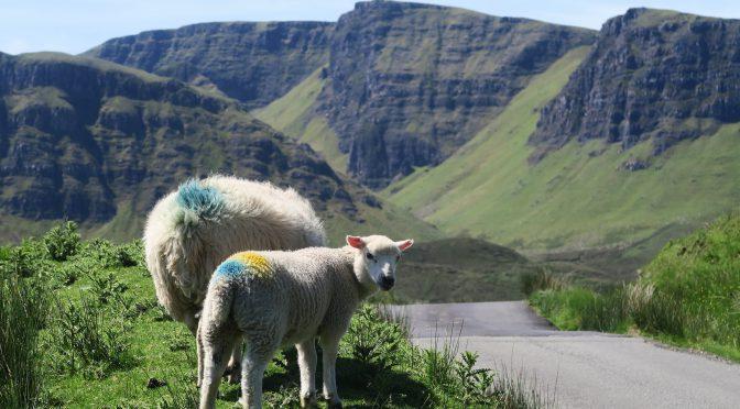 Nyfiken på Skottland?